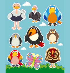 sticker set with different types of birds vector image