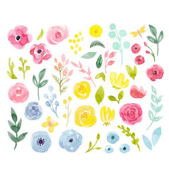 watercolor abstract floral set vector image vector image