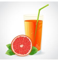 A glass of fresh grapefruit juice and grapefruit vector