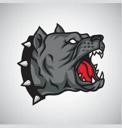 angry pitbull dog logo mascot design vector image