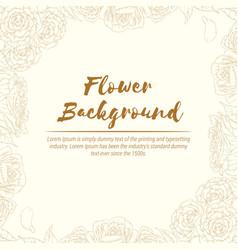 background hand drawn flower rose sketch floral vector image