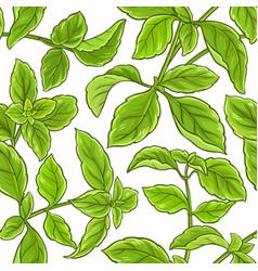 basil plant pattern vector image