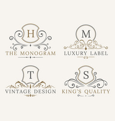 luxury logo template shield business sign for vector image