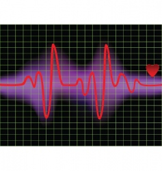 Pulse and heartbeat vector
