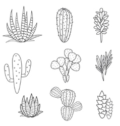 Succulents plant set Botanical black and vector
