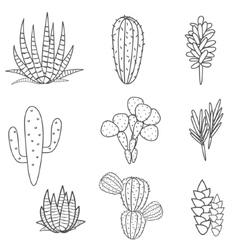 Succulents plant set botanical black vector