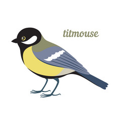 titmouse vector image vector image
