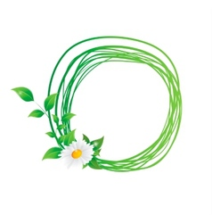 Chamomile flower and green leaves vector