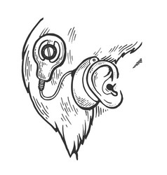 cochlear implant engraving vector image
