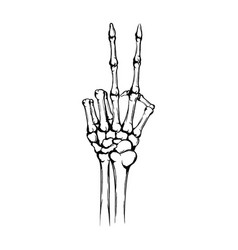 hand skeleton with raised up forefinger vector image