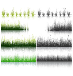 Set of green and black grass isolated on white vector