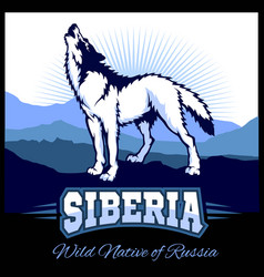 Siberia - a wolf on the background of the plain of vector
