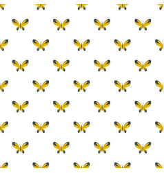 Wide wing butterfly pattern seamless vector