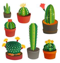 cactus flat style nature desert flower green vector image vector image