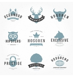 Retro Vintage Logotypes or insignias Hand drawn vector image