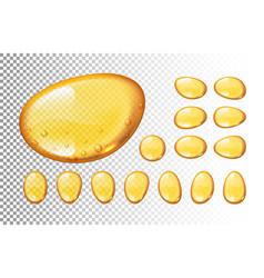 set of honey drops on transparent vector image