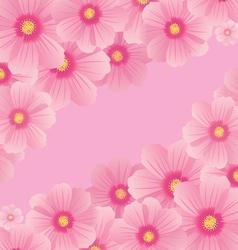 cosmos flowers vector image vector image