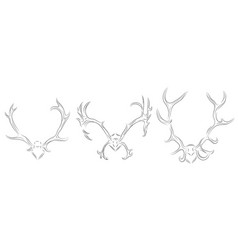 set of contour drawing of different deer antlers vector image