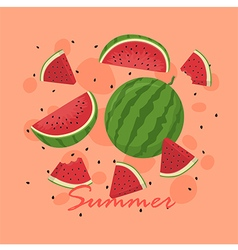 Summer Watermelon Fruit Slice vector image vector image