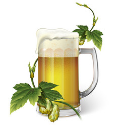 Beer mug hops vector
