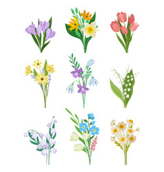 Flat set spring bouquets beautiful vector