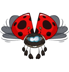 ladybird in flight vector image