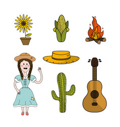 set brazilian things to celebrate festa junina vector image