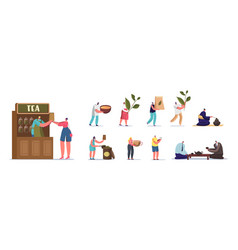 Set people with tea male female characters vector