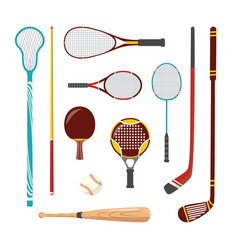 Sport racquets sticks cue and bat icon vector