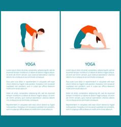 yoga and sportive woman set vector image