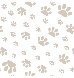 Seamless pattern with pet paws walking in vector image