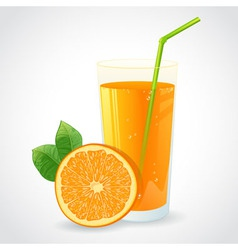 A glass of fresh orange juice and orange vector image