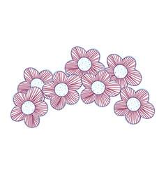 beutiful flowers decoration design vector image