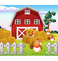 Chickens at the farm near the red barnhouse vector