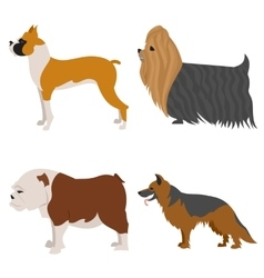 Dogs flat set vector