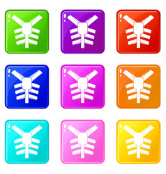 Human thorax icons 9 set vector