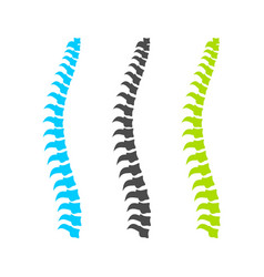 spine graphic set design vector image
