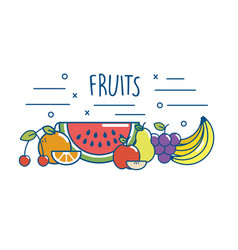 tasty fruits food nutrition diet vector image
