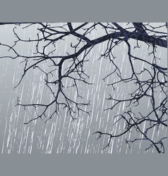 Winter branches vector