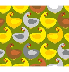 Chicken seamless pattern chicken farm many colored vector