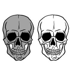Set of Human Skulls - vector image vector image