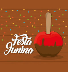 Festa junina design vector