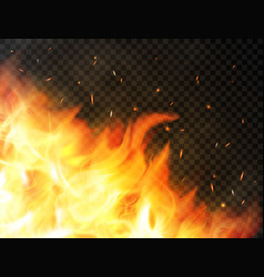 Fire background with flames red fire sparks vector