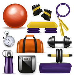 fitness equipment bodybuilding dumpbell vector image