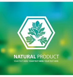 Floral logo 0001 vector