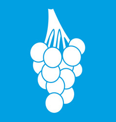 Grapes icon white vector