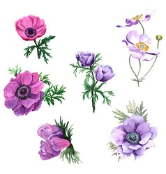 Set of watercolor flowers vector