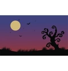Halloween bat and dry tree scenery vector image vector image