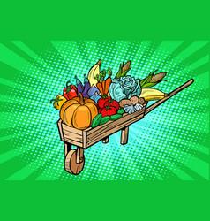 autumn harvest in a wooden farm wheelbarrow vector image