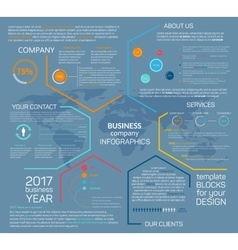 Business company infographics chart diagram vector image
